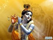 Krishna 15