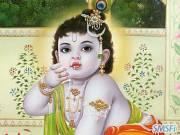 Krishna 19