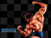 Arnold Schwarzenegger 0007