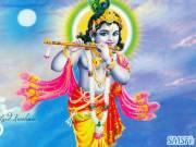 Krishna 04
