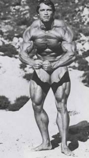 Arnold Schwarzenegger 0011