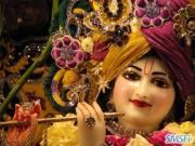 Krishna 21