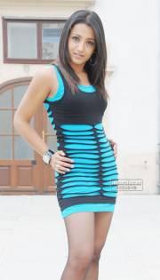 Trisha Krishnan 0007