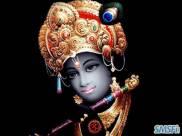 Krishna 14