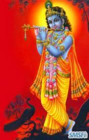 Krishna 17