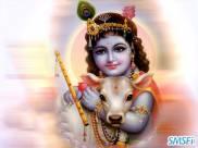 Krishna 08