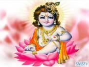 Krishna 20