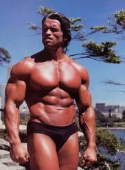 Arnold Schwarzenegger 0001