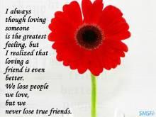 Friendship 028