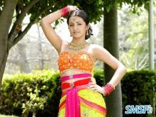 Trisha-Krishnan-005