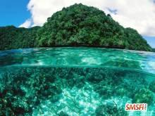 Limestone Island Palau