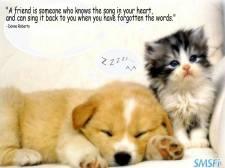 Friendship 066