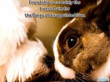 Friendship 057