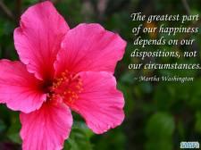 Happiness 026