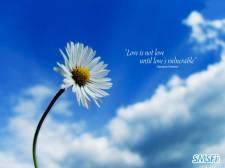 love 018