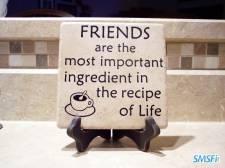 Friendship 010