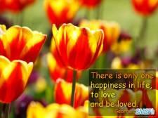 Happiness 014
