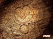 Heart on a Tree Stump