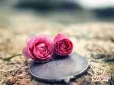 Heart Touching Love